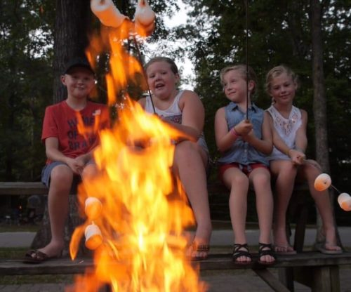 Kids Roasting Marshmallows Around a Fire pit